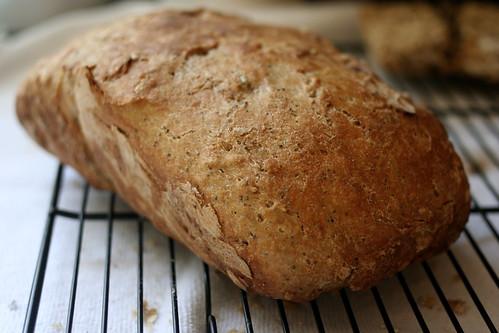 quick rise no  knead