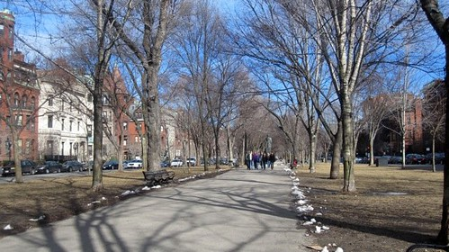 Comm Ave
