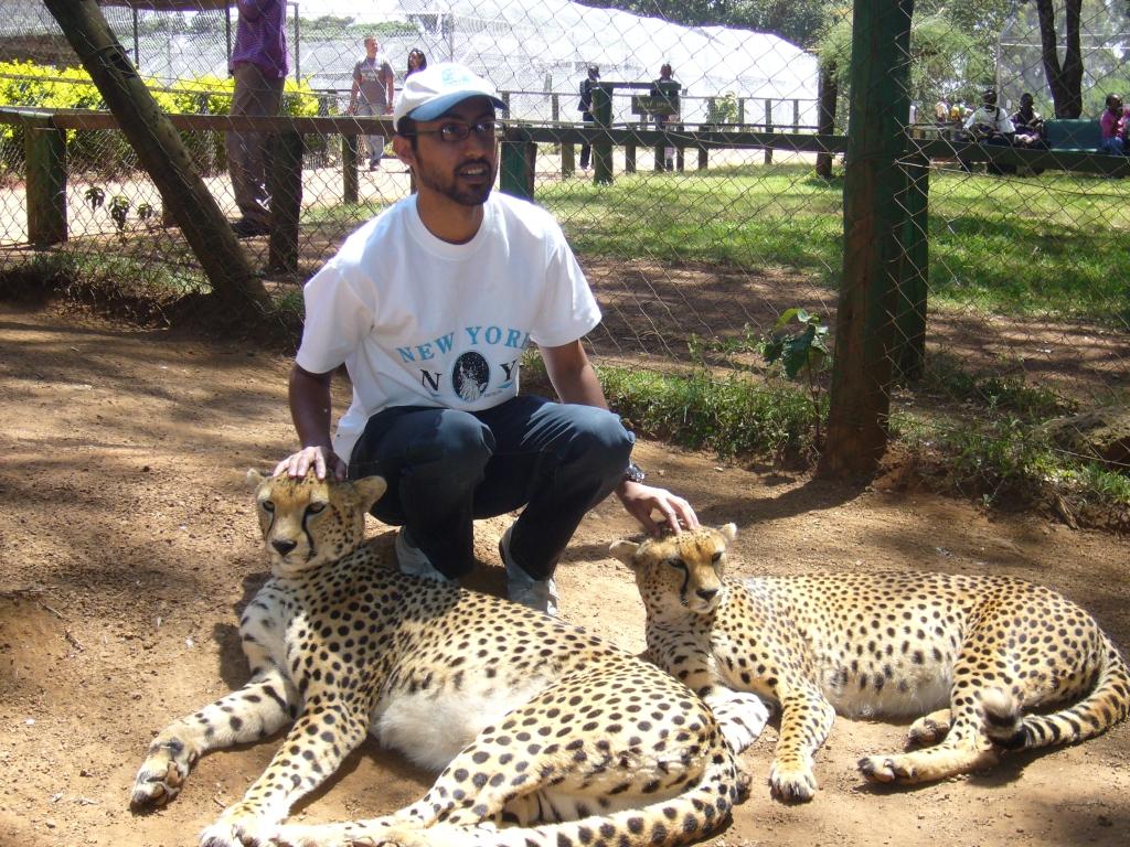 Animal Orphanage