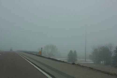 Foggy and Gross