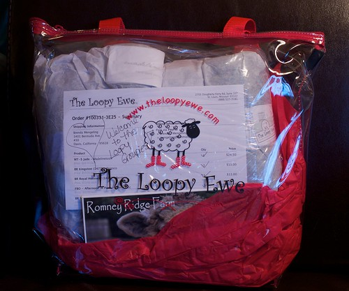 Loopy Groupie Bag