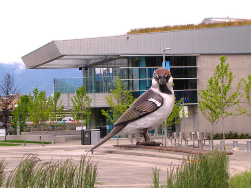 Olympic Village in Vancouver's Southeast Falsecreek The Sparrow and Community Centre at back