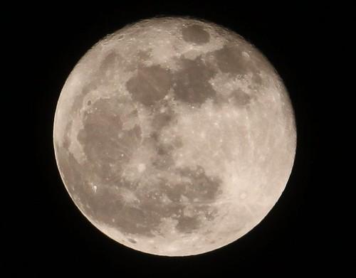 Jan 2010 Full Moon