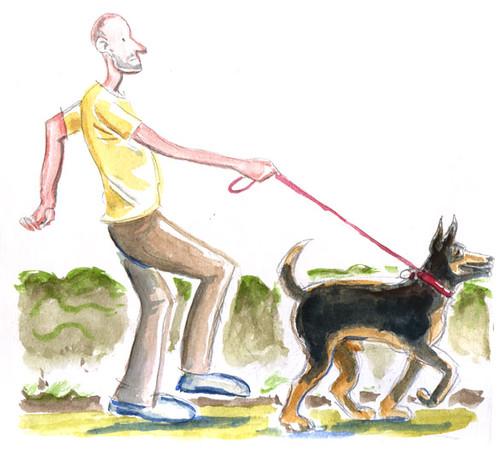 shepherd-walker