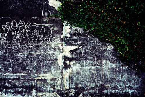 Graffiti under the Sydney Harbour Bridge.