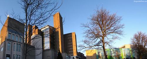 Art Gallery, Library, Hub