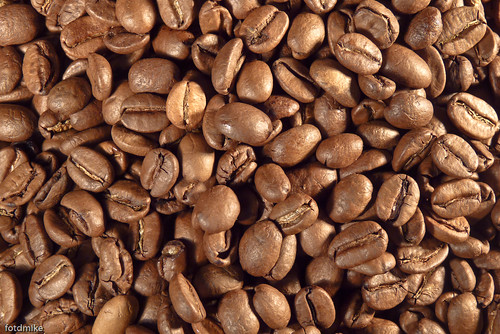 Coffee time! P1030334