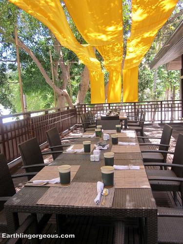 pawikan resto at anvaya cove