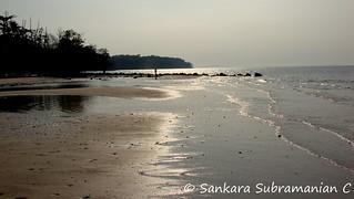 Elephant Beach - Shimmering in the sunshine