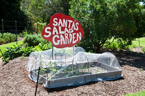 Santa's garden!