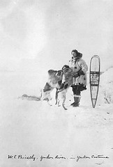W.E. Priestley in parka with snowshoes and dogs, Yukon River
