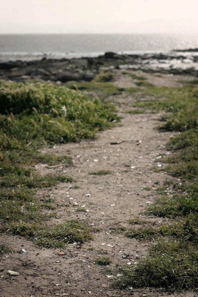 Path #3, Hayward ferry landing