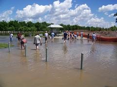 Wading Across the Flood
