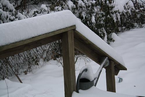 snow 1-30-10