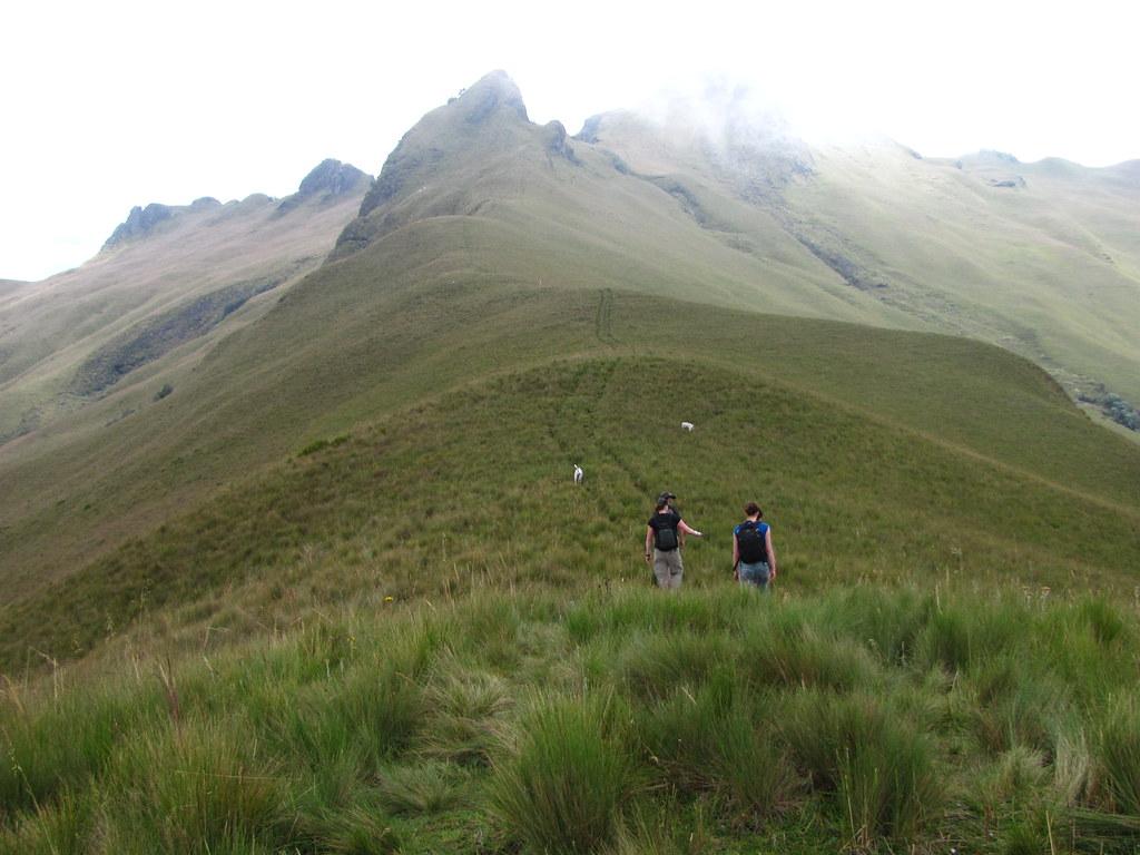The road to Pasochoa