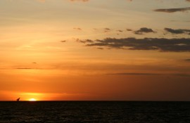 Zonsondergang Lake Victoria