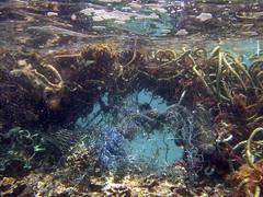 Marine Debris is a Global Problem