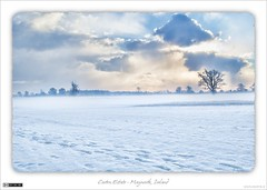A Dramatic Winter in Carton