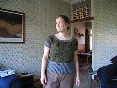 finished lichen jumper