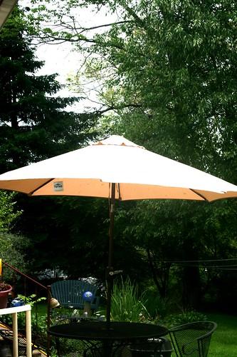 'New' umbrella