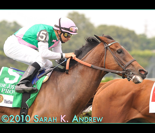 Proviso (GB) and Mike Smith make their winning move in the G1 Just A Game Stakes
