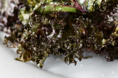 toasted kale chips