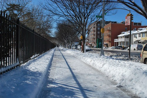 2010-02-11_Snow_Aftermath01