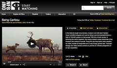Being Caribou (2004) NFB Documentary