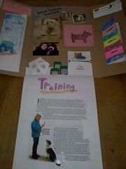 Poppy's 'Puppies' lapbook - Training