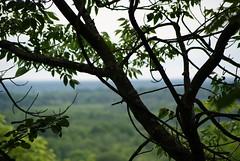 Gatineau Park - King Mountain
