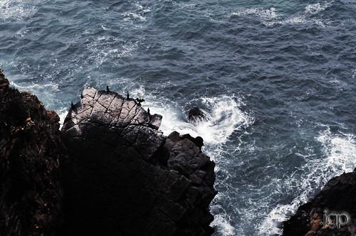 oceantwologo