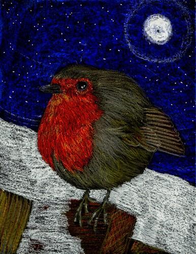 Moonlit Robin