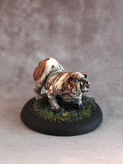 Canine Remains, Malifaux