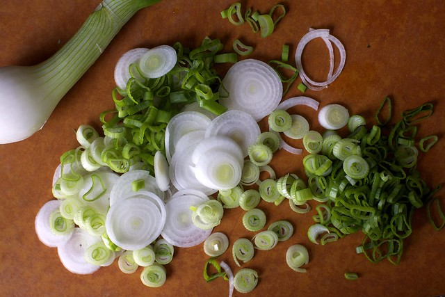 spring onions, concentrics