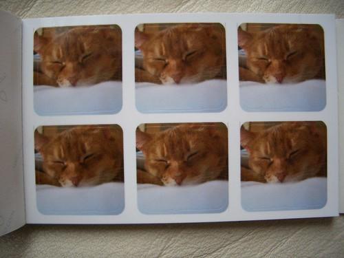 Kooky Kat Kreations Moo Stickers