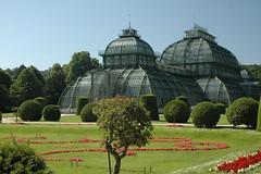 Österreich: Schönbrunn - Palmenhaus