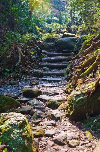 Trail to Jinmu Temple