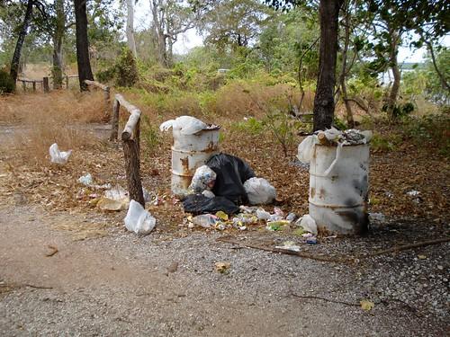 Litter at Prunung
