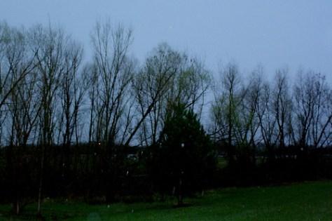 Rain Ridden Skies