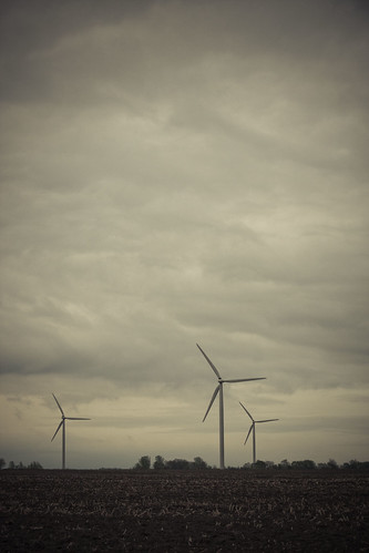 113/365 | wind farm