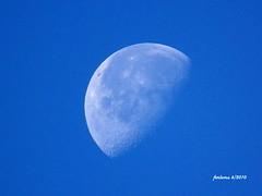 Luna de día. 6-2010
