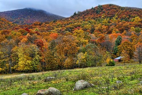 Autumn Beyond the Fields