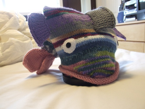Kitten's fish hat
