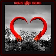 FELIZ AÑO 2010 FOTÓGRAFOS !!