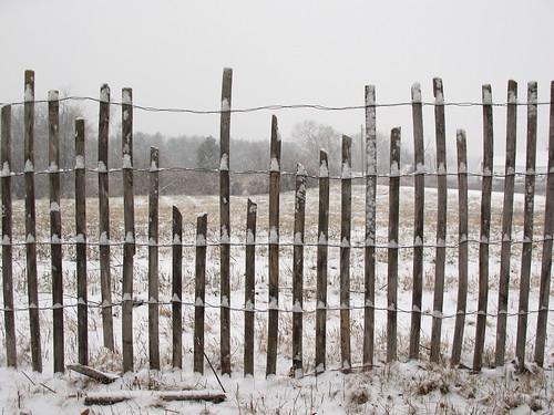 Snowy Snow Fencing