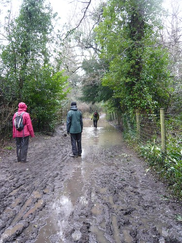 Very wet path