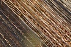 Reinforce Steel Bars