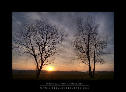 Punggol Fields Sunrise 28-03-10 #6