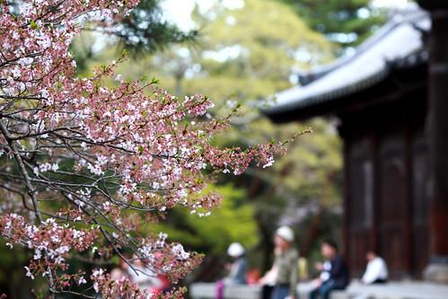JAPAN_DAY4_101