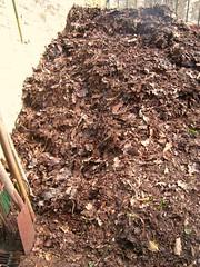 Frisch geschichteter Kompost 1